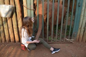Girl and small elephant playing