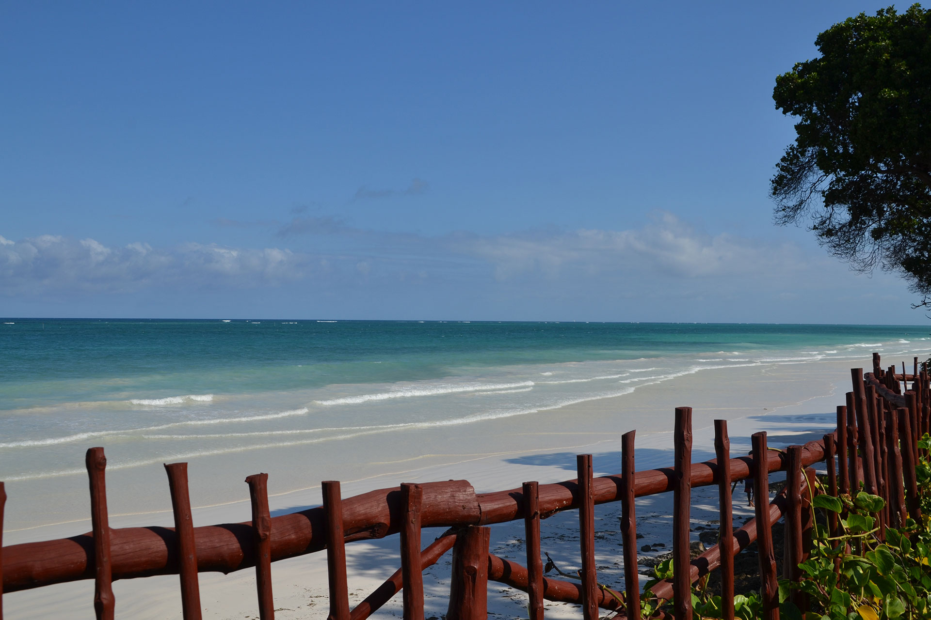 Diani Beach and ocean