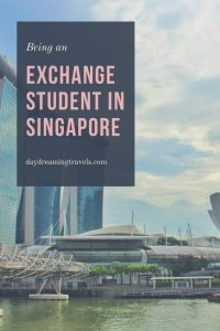 Exchange student in Singapore Pinterest Pin