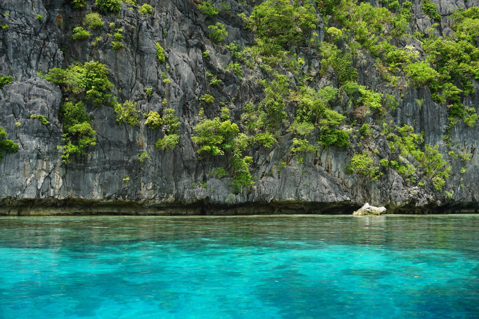Vacation to the Philippines