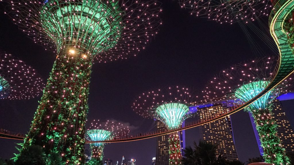 Supertree Grove in Singapore lit up