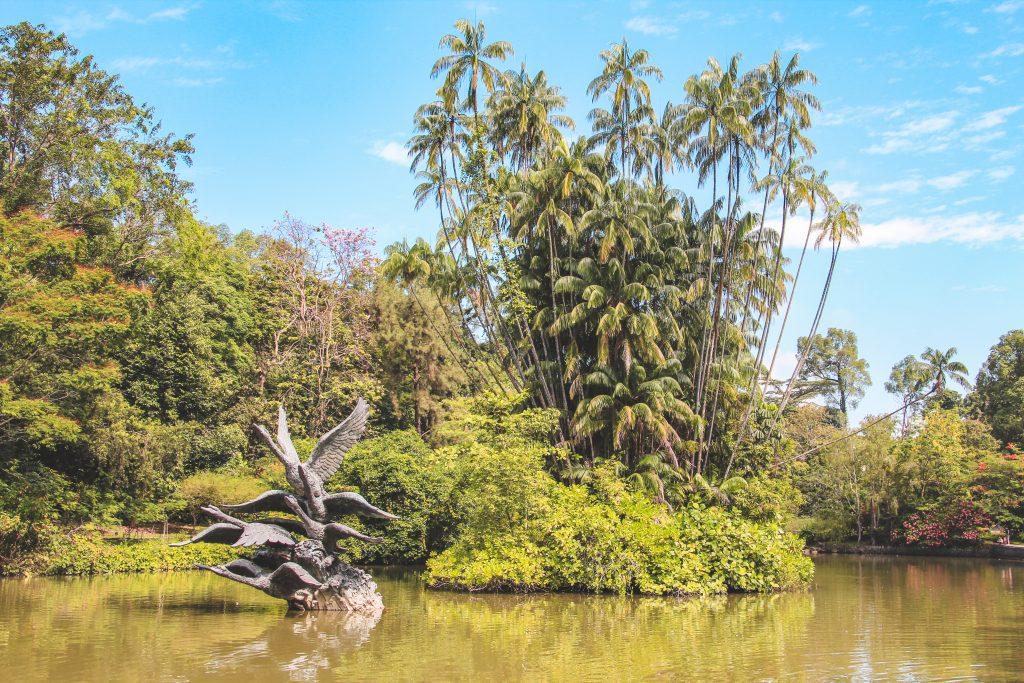 Swan Lake Botanic Gardens