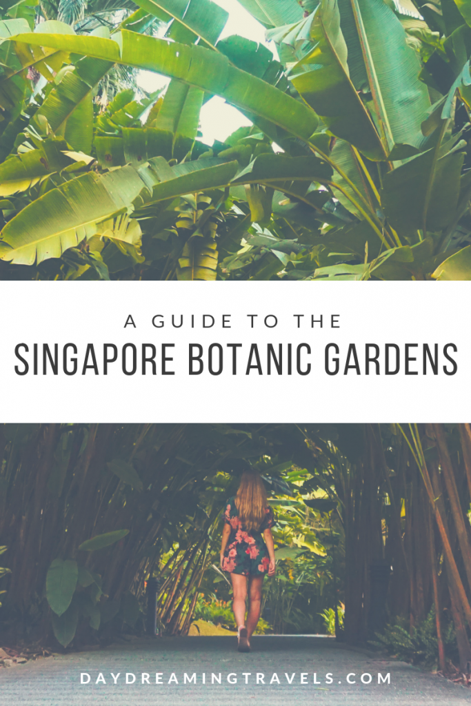 Pinterest SINGAPORE Botanic Gardens