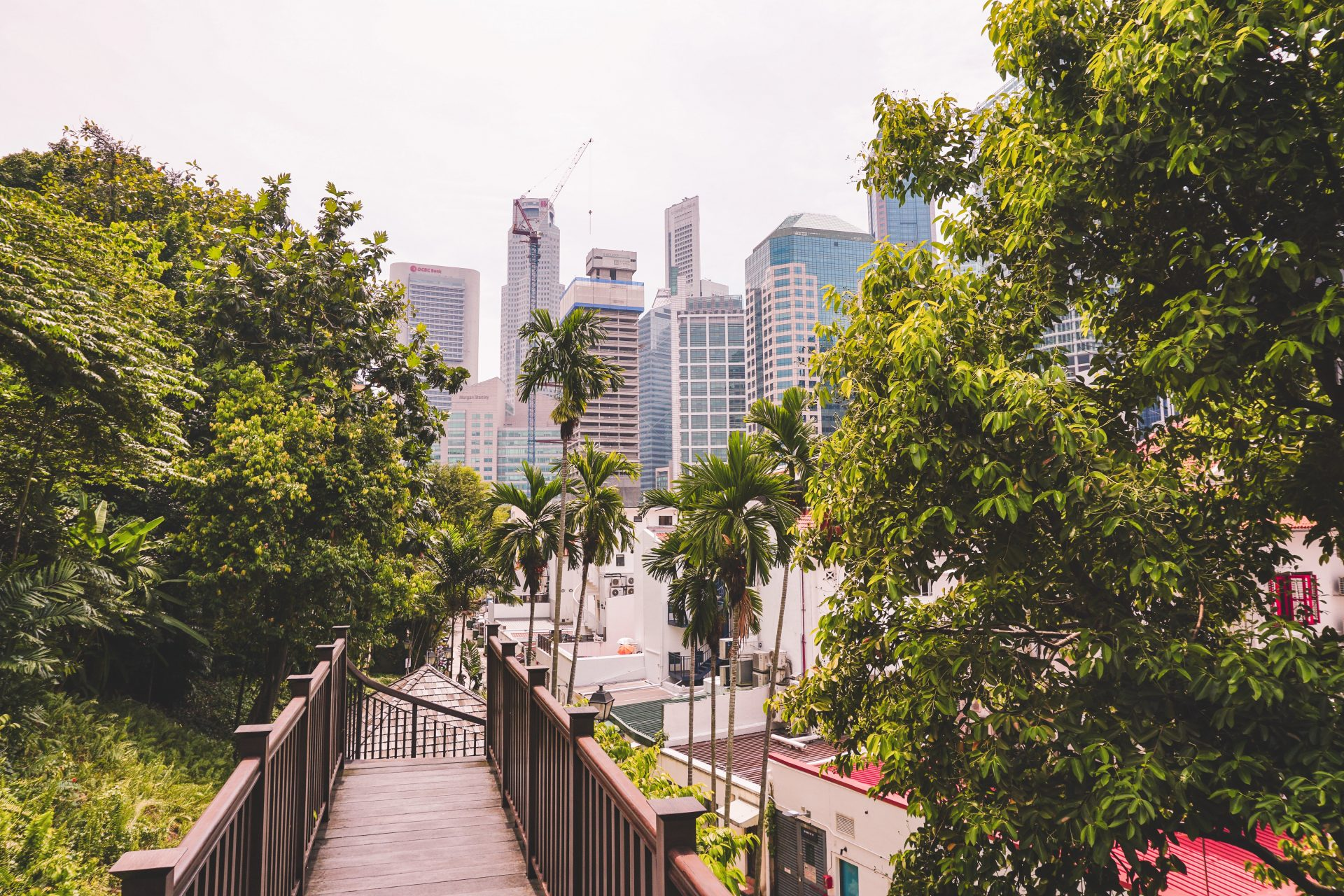 View of Singapore from small walkway